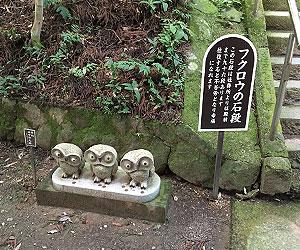 フクロウの石段