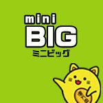 mini BIG