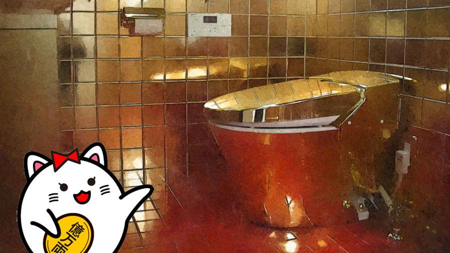ドクター中松 トイレ